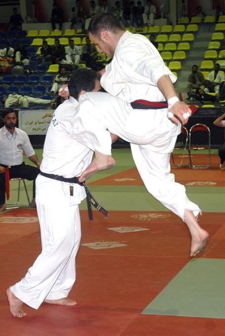 کادر فنی تیم ملی سبکهای آزاد کاراته معرفی شدند