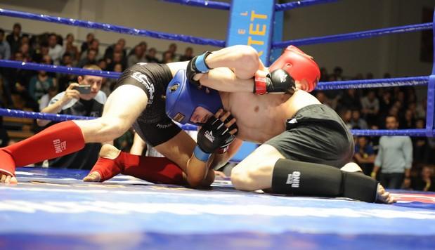 لزوم برخورد جدی با فعالیت های غیر قانونی MMA